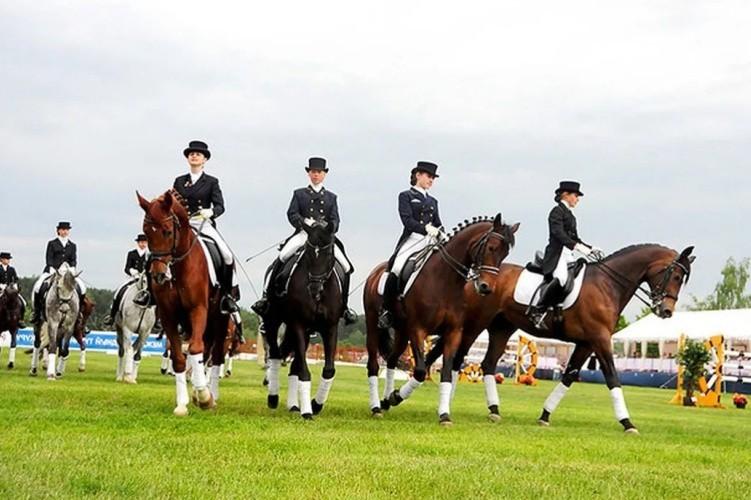 Виды конных соревнований