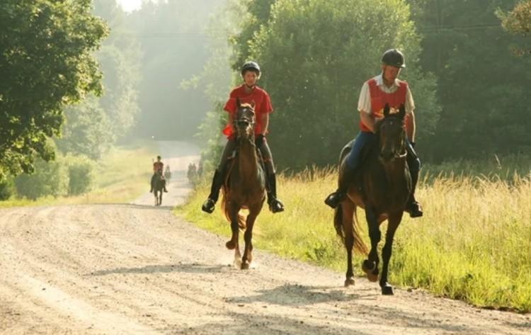 Конные пробеги по маршруту