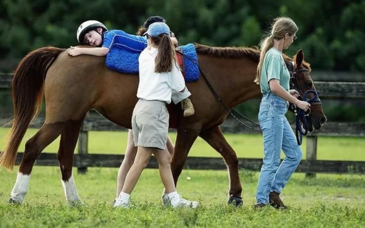 Лечебная езда на лошади