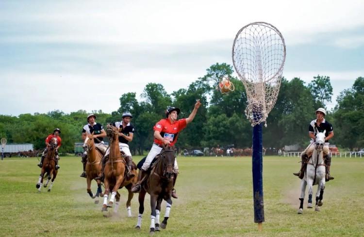 Пато на лошадях фото