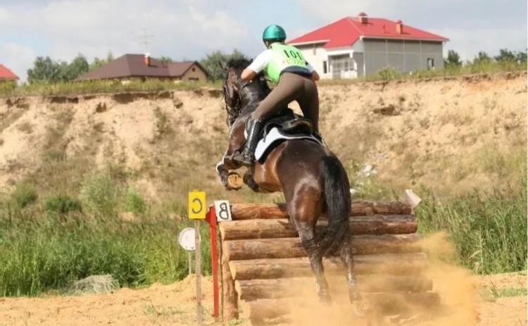 Полевые испытания в конном спорте