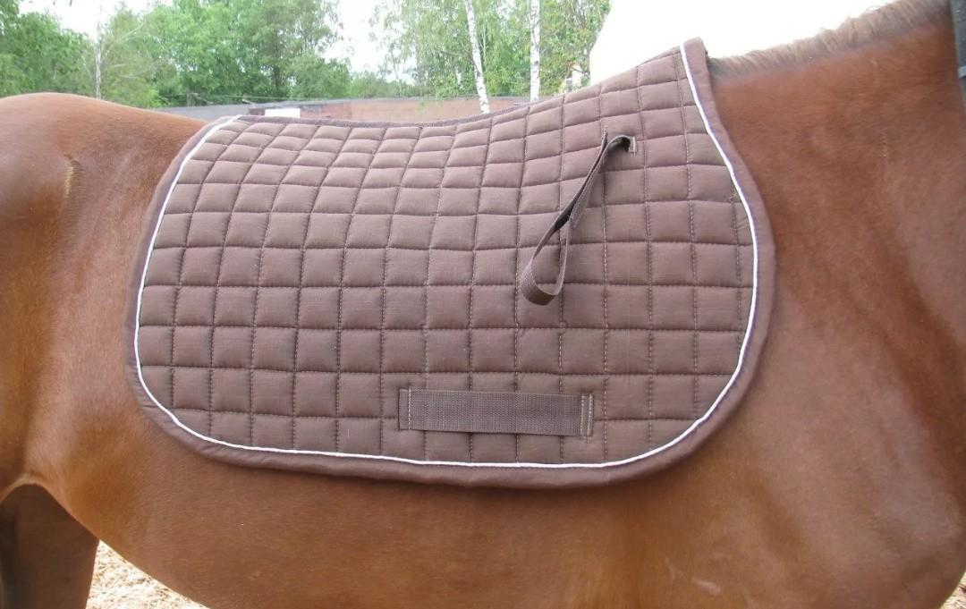 Вольтрап для лошади