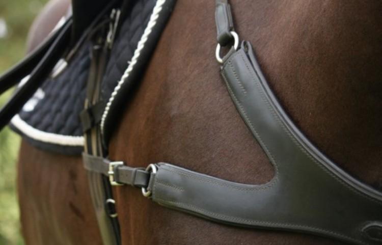 Амуниция и снаряжение: средства предохранения лошади