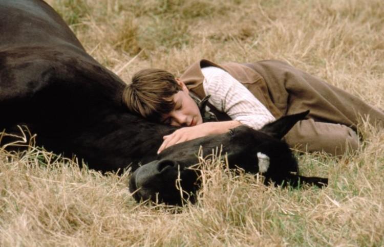 Кадр фильма Черный красавиц