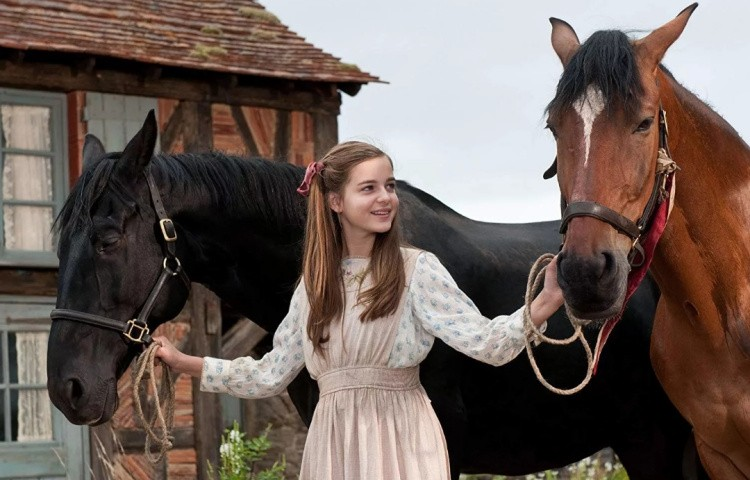 Подборка художественных фильмов про лошадей