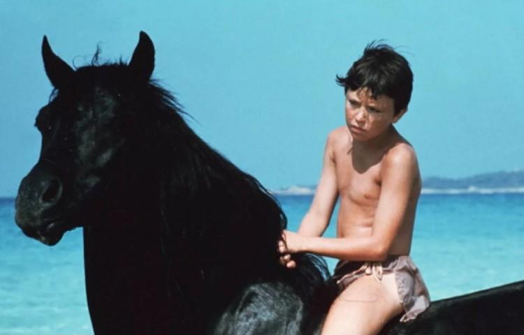 Кадр из фильма Черный скакун