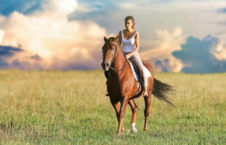 Девушка верхом на лошади в поле