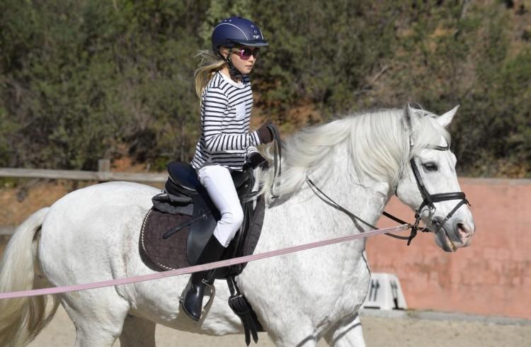 Тренировка конный спорт