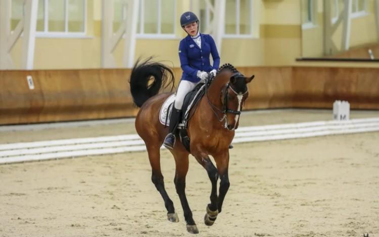 Лошадь при галопе