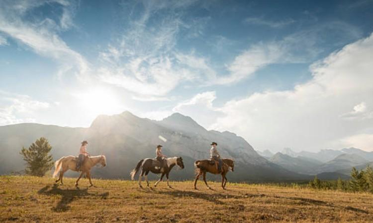 Отдых на лошадях