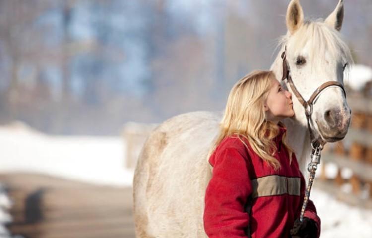 Как стать другом для лошади