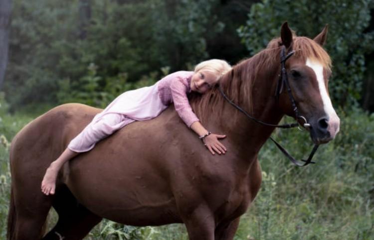Любовь к лошади