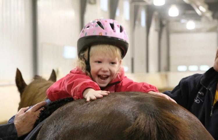 Лечение лошадью