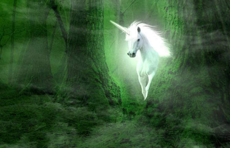 Лошадь в сказочном лесу