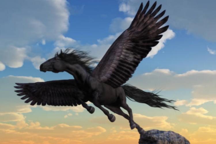Лошадь с крыльямм