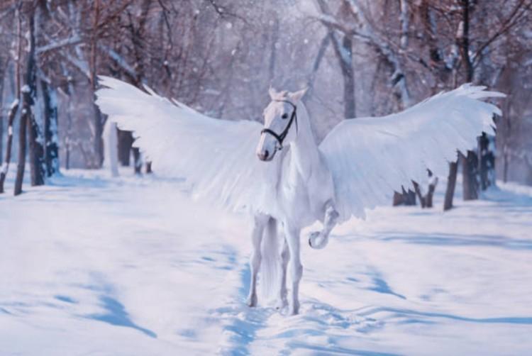 Белый конь с крыльями