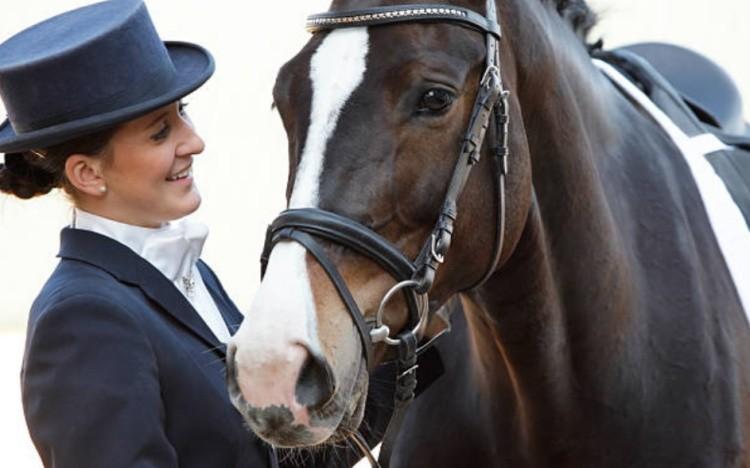 Виды конного спорта и соревнования
