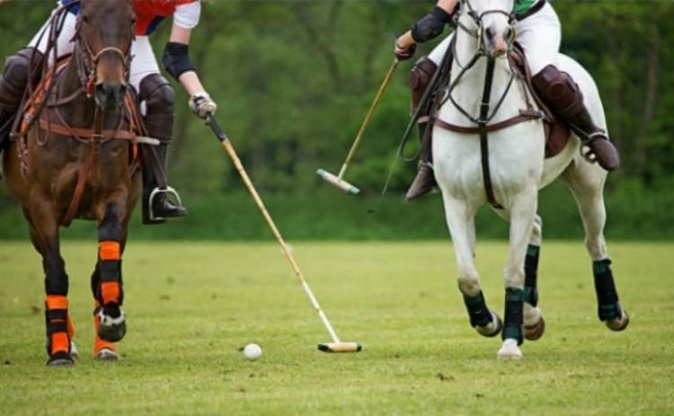 Игры на лошадях поло