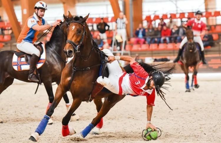 Игра на лошадях хорсбол