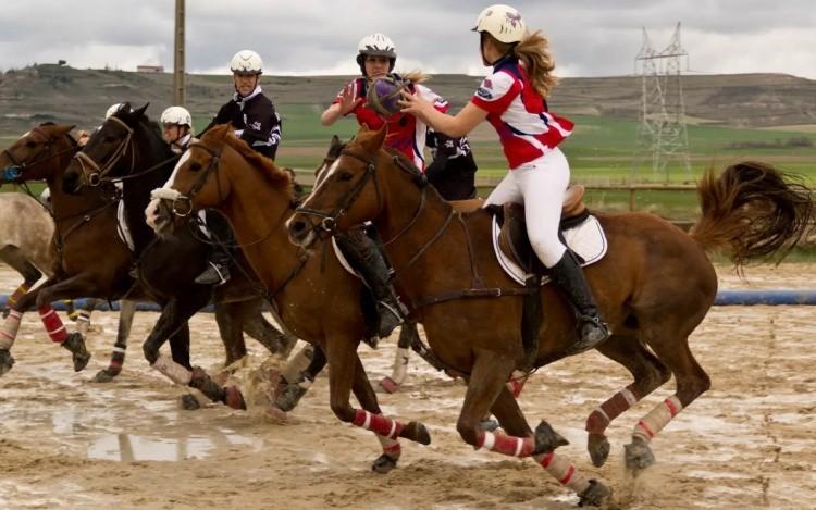 хорсбол игра на лошадях