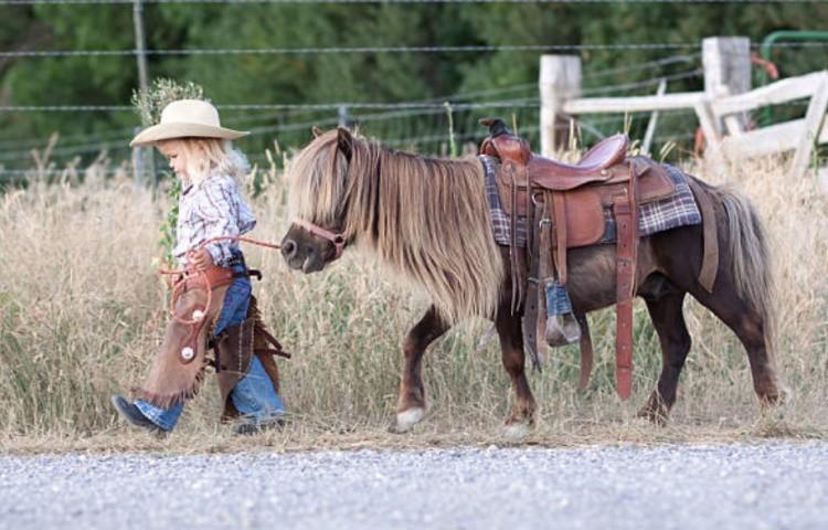 Пони для ребёнка