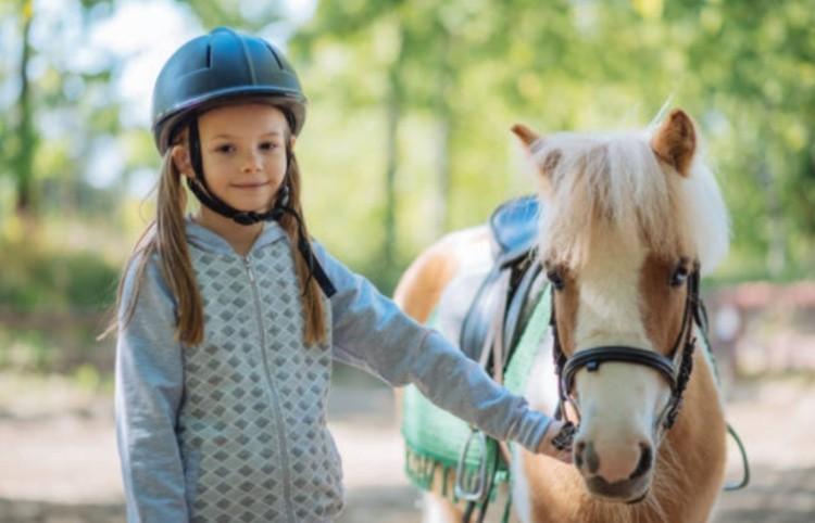 Пони и ребёнок