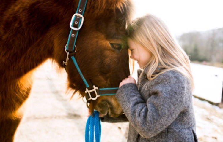 Пони и девочка