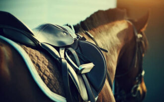 Правила по технике безопасности при работе с лошадьми